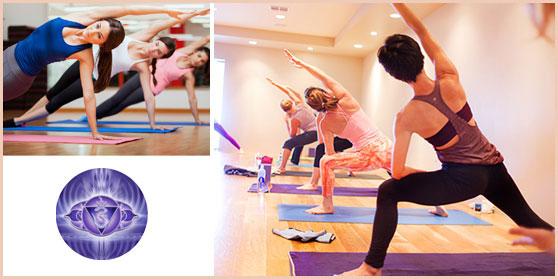 yoga_integrala