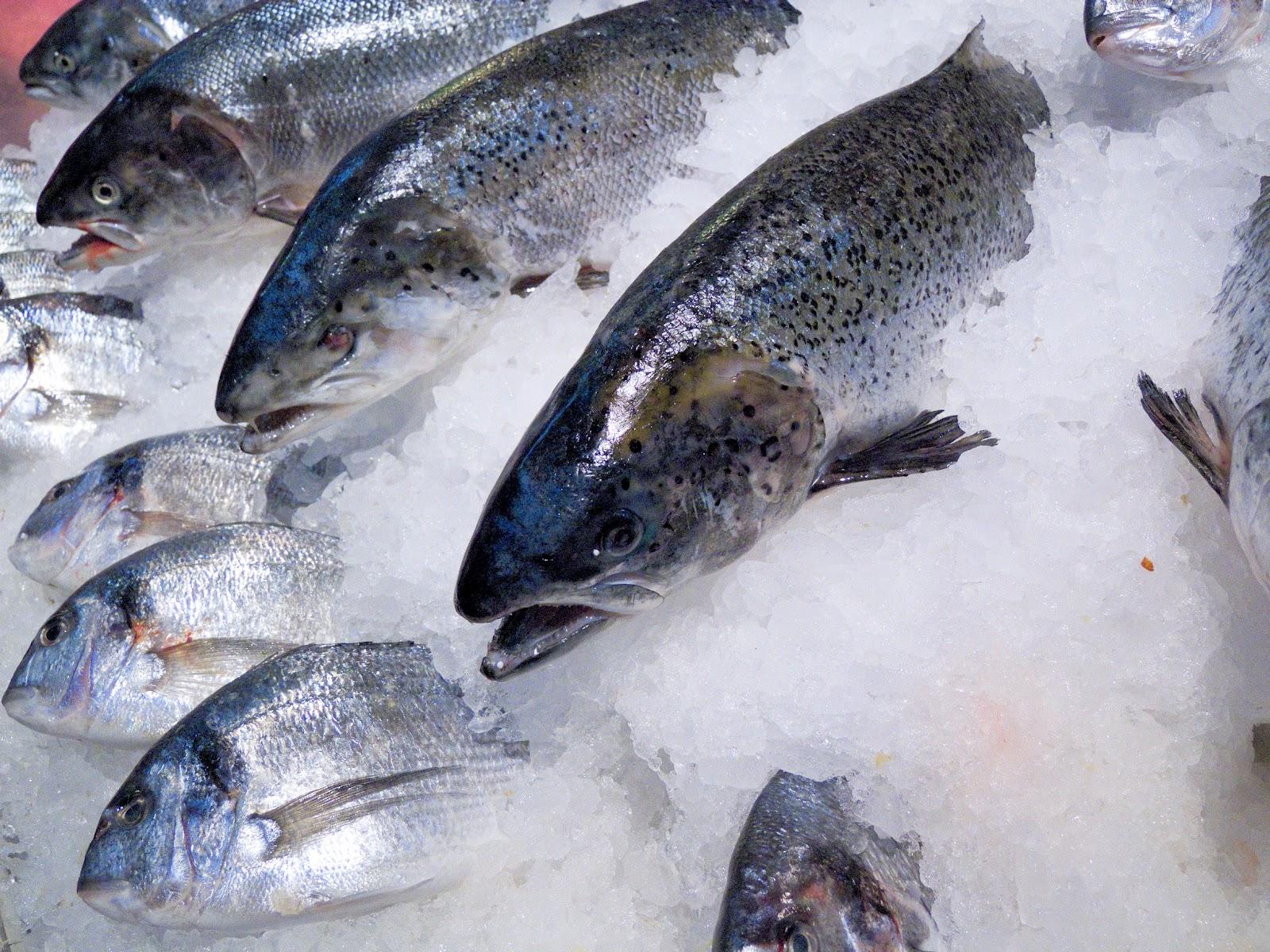 рыба, omactiv