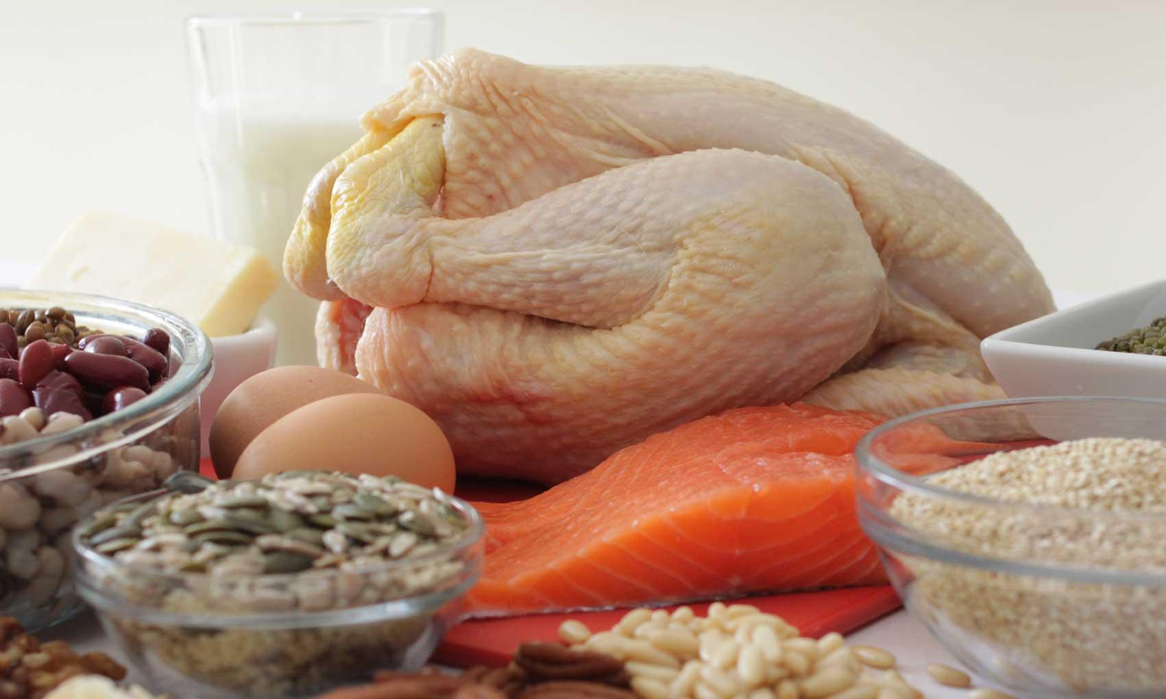 protein-rich-meals
