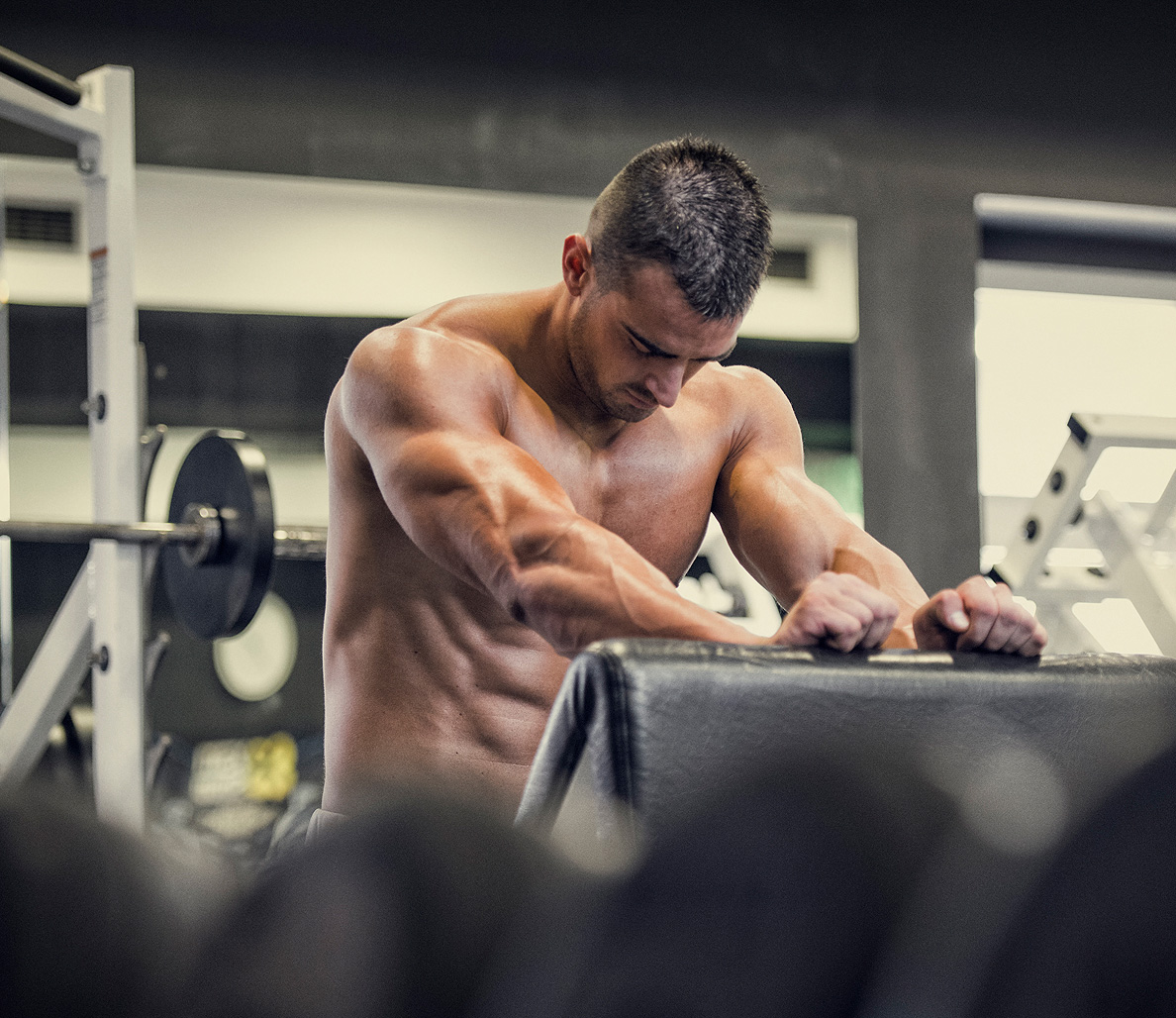 muscular_muscle_main1